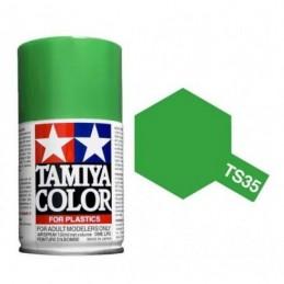 TS-35 Park Green Gloss 100ml